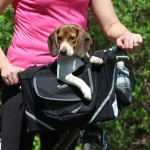 Travelin K9 Co-Pilot Pet Bike Basket