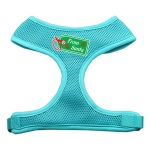 From Santa Tag Screen Print Mesh Harness Aqua Large