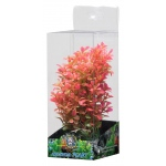 "Jungle Bob Aquarium Plant: Small, 7""-9.5"""