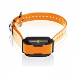 Dogtra Dogtra Edge RT Trainer Extra Collar - Orange