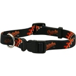 Pets First Baltimore Orioles Dog Collar - Large