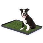 Prevue Hendryx Tinkle Turf - Small