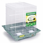 Prevue Hendryx Clean Life Small Flight Cage - Green & White