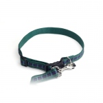 Color Pet™ Casey & Eddy Scottish/Green Collar: Large