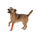 Pet Life Extreme-Neoprene Joint Protective Reflective Pet Sleeves: Small, Orange