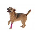 Pet Life Extreme-Neoprene Joint Protective Reflective Pet Sleeves: Small, Hot Pink