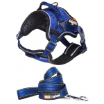 Helios Dog Chest Compression Pet Harness and Leash Combo: Large, Blue