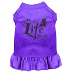 A Pirate's Life Embroidered Dog Dress Purple Sm (10)