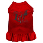 A Pirate's Life Embroidered Dog Dress Red Med (12)