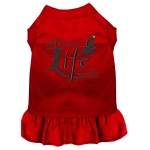 A Pirate's Life Embroidered Dog Dress Red Lg (14)